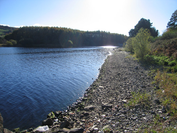Poulaphouca_Reservoir,_County_Kildare_-_geograph.org.uk_-_1807100
