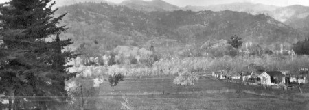 qc309C Napa valley California   1923